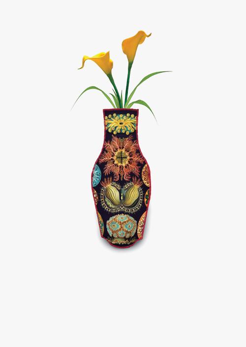 Haeckel Cotton Flower Vase