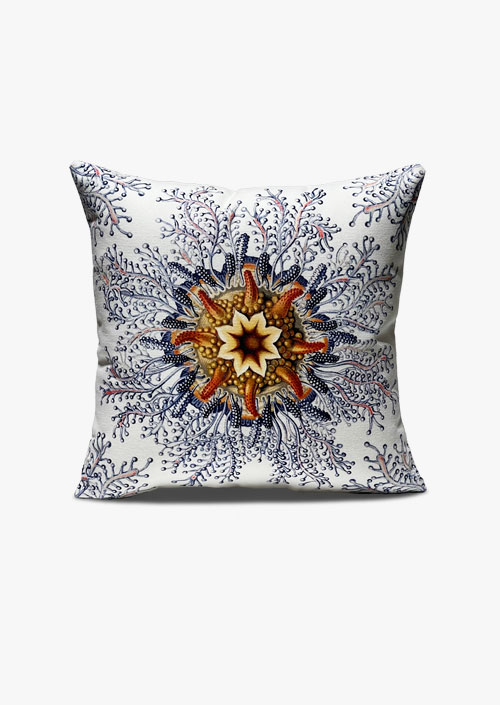 Cushion cover 45x45 cm, design inspired by Ernst Haeckel's engravings